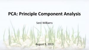 PCA Principle Component Analysis Ser Williams August 9