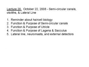 Lecture 20 October 22 2008 Semicircular canals otoliths