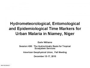 Hydrometeorological Entomological and Epidemiological Time Markers for Urban