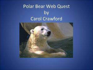 Polar Bear Web Quest by Carol Crawford Polar