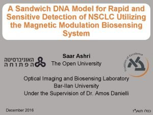 A Sandwich DNA Model for Rapid and Sensitive