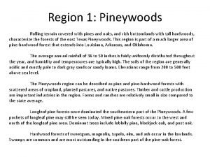 Region 1 Pineywoods Rolling terrain covered with pines