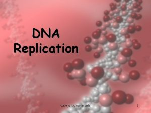 DNA Replication copyright cmassengale 1 Replication Facts DNA