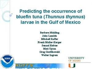Predicting the occurrence of bluefin tuna Thunnus thynnus