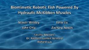 Biomimetic Robotic Fish Powered By Hydraulic Mc Kibben