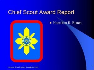 Chief Scout Award Report l National Scout Leaders