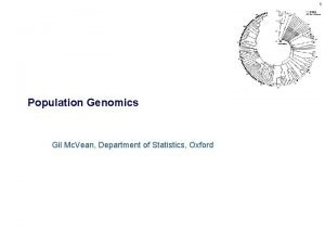 1 Population Genomics Gil Mc Vean Department of