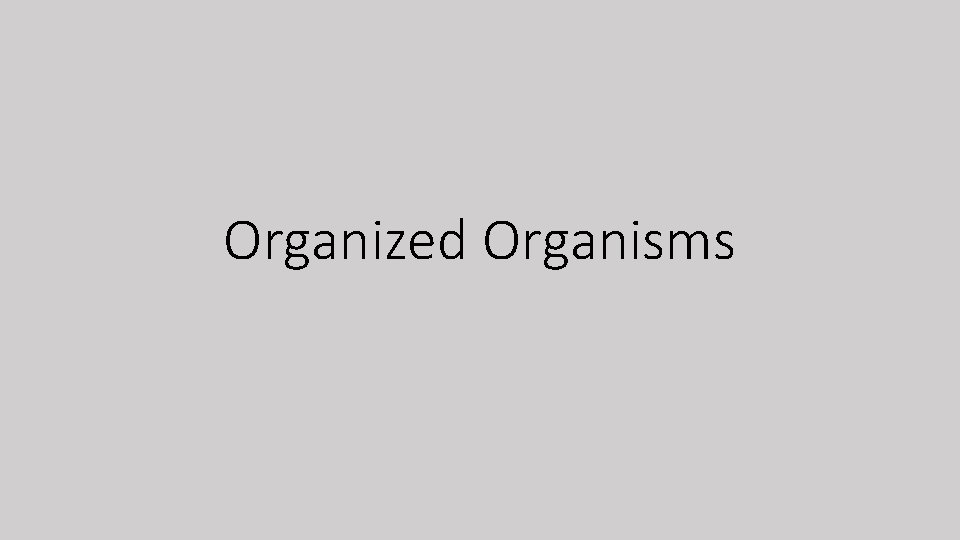 Organized Organisms Organized Organisms Classification an organization system