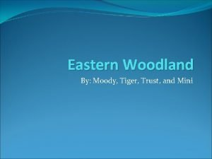 Eastern Woodland By Moody Tiger Trust and Mini