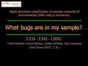 Rapid taxonomic classification of complex consortia of environmental