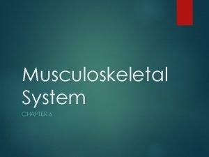 Musculoskeletal System CHAPTER 6 Combining Forms for the