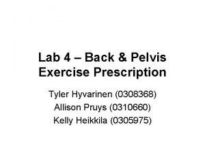 Lab 4 Back Pelvis Exercise Prescription Tyler Hyvarinen