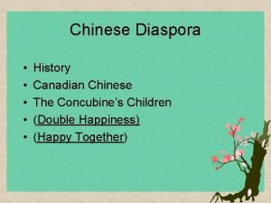 Chinese Diaspora History Canadian Chinese The Concubines Children
