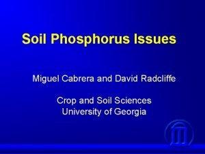 Soil Phosphorus Issues Miguel Cabrera and David Radcliffe