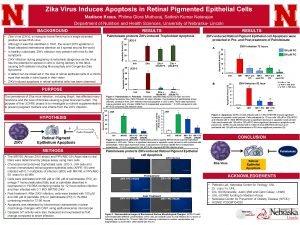 Zika Virus Induces Apoptosis in Retinal Pigmented Epithelial