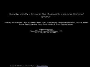 Obstructive uropathy in the mouse Role of osteopontin