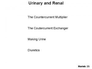 Urinary and Renal The Countercurrent Multiplier The Coutercurrent