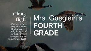 taking flight Welcome to Mrs Goegleins Fourth Grade