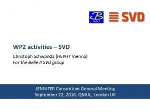 WP 2 activities SVD Christoph Schwanda HEPHY Vienna