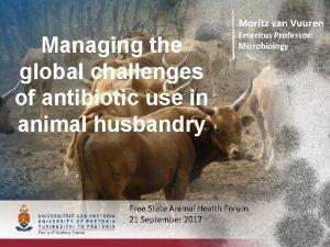Moritz van Vuuren Managing the global challenges of