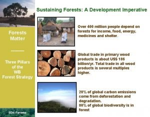 Sustaining Forests A Development Imperative Forests Matter Three