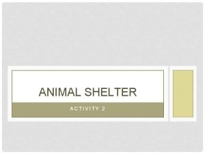 ANIMAL SHELTER ACTIVITY 2 ACTIVITY 2 CONTENTS MODEL