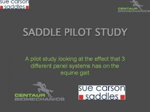 SADDLE PILOT STUDY A pilot study looking at