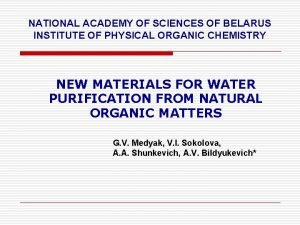 NATIONAL ACADEMY OF SCIENCES OF BELARUS INSTITUTE OF