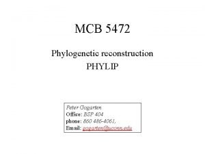 MCB 5472 Phylogenetic reconstruction PHYLIP Peter Gogarten Office