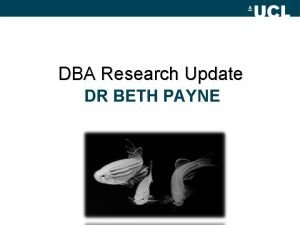 DBA Research Update DR BETH PAYNE Researching what