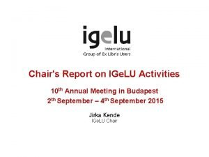 Chairs Report on IGe LU Activities 10 th