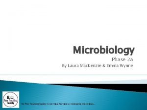 Microbiology Phase 2 a By Laura Mac Kenzie