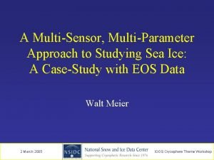 A MultiSensor MultiParameter Approach to Studying Sea Ice