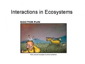 Interactions in Ecosystems Habitat vs Niche Habitat Niche