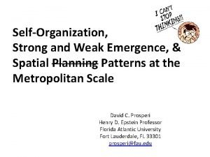 SelfOrganization Strong and Weak Emergence Spatial Planning Patterns