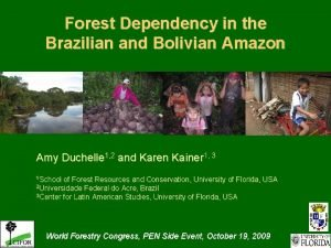 Forest Dependency in the Brazilian and Bolivian Amazon