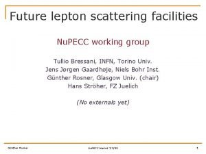 Future lepton scattering facilities Nu PECC working group