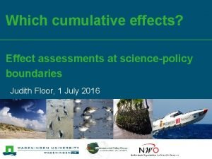 Which cumulative effects Effect assessments at sciencepolicy boundaries