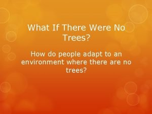 What If There Were No Trees How do