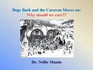 Dogs Bark and the Caravan Moves on Why