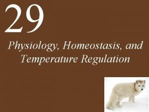 29 Physiology Homeostasis and Temperature Regulation Homeostasis the
