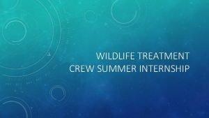 WILDLIFE TREATMENT CREW SUMMER INTERNSHIP WHAT IS WILDLIFE