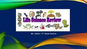 Ms Askew 5 th Grade Science AN ANIMAL