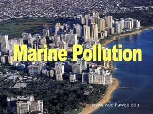 www wcc hawaii edu What is pollution Pollution