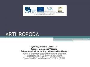 ARTHROPODA Vukov materil OR 03 71 Tvrce Mgr