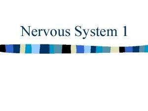 Nervous System 1 Nervous system is conservative n