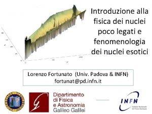 Introduzione alla fisica dei nuclei poco legati e