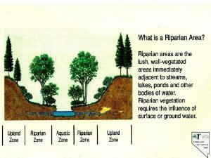 Riparian Proper Functioning Condition A process for assessment