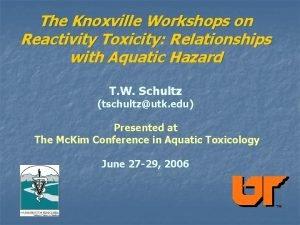 The Knoxville Workshops on Reactivity Toxicity Relationships with