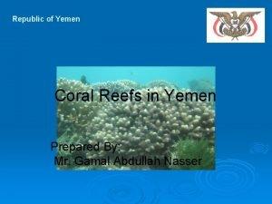 Republic of Yemen Coral Reefs in Yemen Prepared